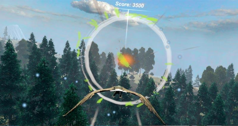 Virtual Reality Biofeedback - Fly like an Eagle