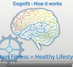 Cognifit Mindfit Program
